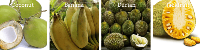 Coconut Banana, Durian, Jackfruit