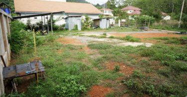 800Sqm plot of Chanote land for sale. Ideal for a house.
