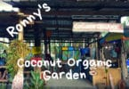 Ronny's Coconut Organic Garden, Koh Chang