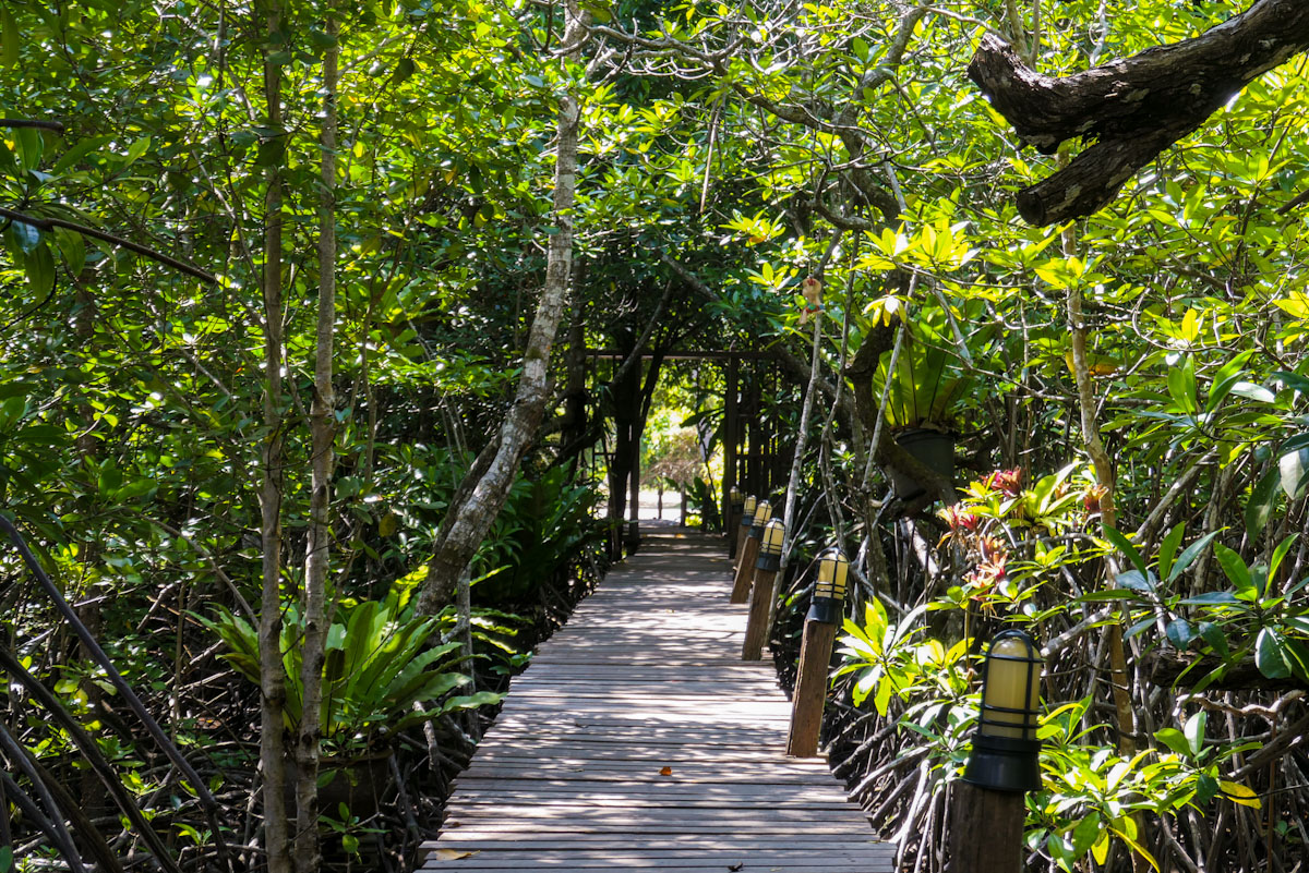 Walkway to our guesthouse