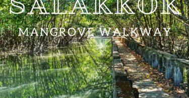 Salakkok Mangrove walkway