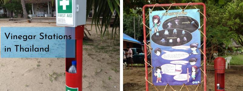 Jellyfish vinegar station Thailand